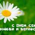 Всероссийский День семьи, любви и верности...